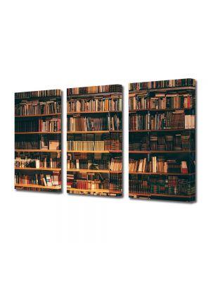 Set Tablouri Muilticanvas 3 Piese Vintage Aspect Retro Biblioteca de vis