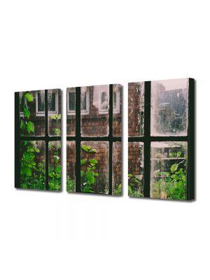 Set Tablouri Muilticanvas 3 Piese Vintage Aspect Retro Plante la fereastra