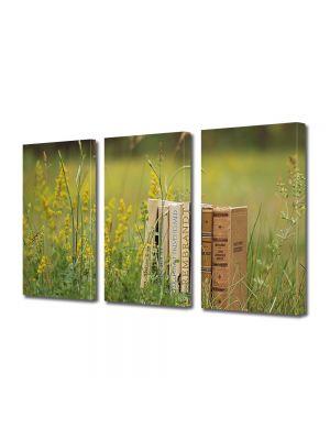 Set Tablouri Muilticanvas 3 Piese Vintage Aspect Retro Lectura in iarba