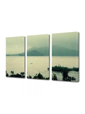 Set Tablouri Muilticanvas 3 Piese Vintage Aspect Retro Vegetatie pe lac