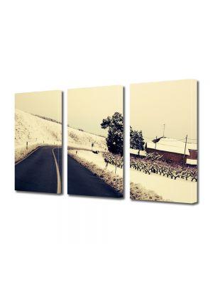 Set Tablouri Muilticanvas 3 Piese Vintage Aspect Retro Drum de iarna