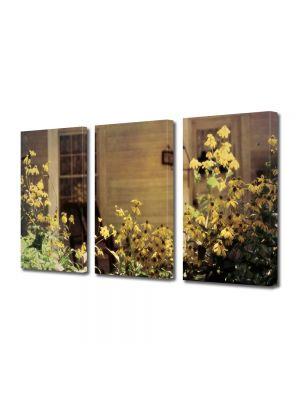 Set Tablouri Muilticanvas 3 Piese Vintage Aspect Retro Flori de gradina