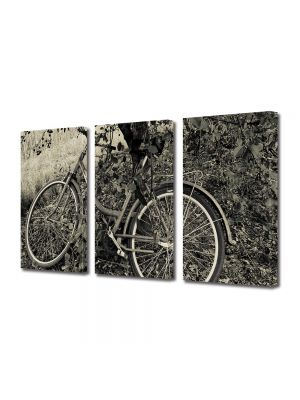 Set Tablouri Muilticanvas 3 Piese Vintage Aspect Retro Bicicleta sub copac