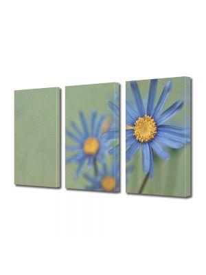Set Tablouri Muilticanvas 3 Piese Vintage Aspect Retro Margarete albastre