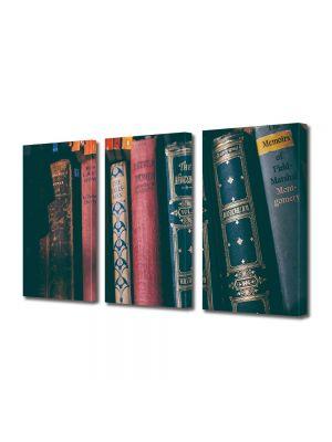 Set Tablouri Muilticanvas 3 Piese Vintage Aspect Retro Raft cu carti vechi