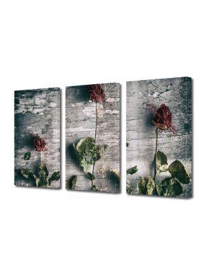 Set Tablouri Muilticanvas 3 Piese Vintage Aspect Retro Aranjament trandafiri uscati