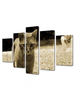 Set Tablouri Muilticanvas 5 Piese Vintage Aspect Retro Pisica in tonuri retro