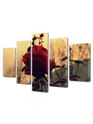 Set Tablouri Muilticanvas 5 Piese Vintage Aspect Retro Trandafir rosu la apus
