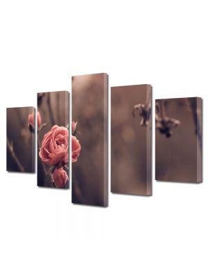 Set Tablouri Muilticanvas 5 Piese Vintage Aspect Retro Trandafiri de toamna