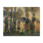 Tablou Arta Clasica Pictor Claude Monet Poplars at Giverny 1888 80 x 100 cm