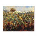 Tablou Arta Clasica Pictor Pierre-Auguste Renoir Field of banana trees 1881 80 x 100 cm