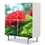 Comoda cu 4 Usi Art Work Flori Floare Rosie, 84 x 84 cm