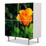 Comoda cu 4 Usi Art Work Flori Mugure de trandafir galben, 84 x 84 cm