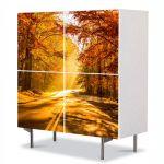 Comoda cu 4 Usi Art Work Peisaje Drum tomnatic, 84 x 84 cm