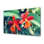 Tablou Canvas Flori Orhidee portocalii