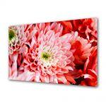 Tablou Canvas Flori Crizantema roz