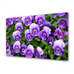 Tablou Canvas Luminos in intuneric VarioView LED Flori Panselute Violet
