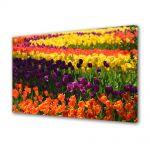 Tablou Canvas Luminos in intuneric VarioView LED Flori Curcubeu de flori