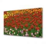 Tablou Canvas Luminos in intuneric VarioView LED Flori Coloritul florilor