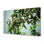 Tablou Canvas Luminos in intuneric VarioView LED Flori Flori albe pe crenguta