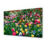 Tablou Canvas Flori Multicolor