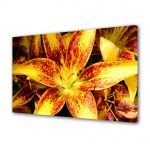 Tablou Canvas Luminos in intuneric VarioView LED Flori Liliac asiatic