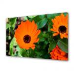Tablou Canvas Flori Flori portocalii