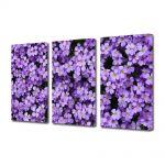 Set Tablouri Multicanvas 3 Piese Flori Flori Violet Aubrieta