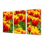 Set Tablouri Multicanvas 3 Piese Flori Flori cu colorit special
