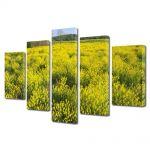 Set Tablouri Multicanvas 5 Piese Flori Pe camp