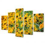 Set Tablouri Multicanvas 5 Piese Flori Abundenta de galben