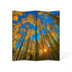 Paravan de Camera ArtDeco din 4 Panouri Peisaj In sus pe cer 140 x 180 cm