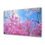 Tablou Canvas Peisaj De la roz la albastru