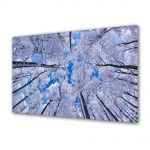Tablou VarioView MoonLight Fosforescent Luminos in intuneric Peisaje In sus iarna