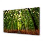 Tablou Canvas Luminos in intuneric VarioView LED Peisaj Padure de bambus