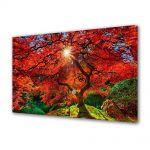 Tablou Canvas Luminos in intuneric VarioView LED Peisaj Copacul fantastic