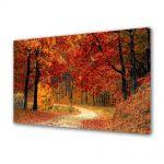 Tablou Canvas Peisaj Drum in padure toamna