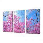 Set Tablouri Multicanvas 3 Piese Peisaj De la roz la albastru