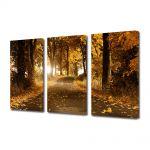Set Tablouri Multicanvas 3 Piese Peisaj Drum de toamna