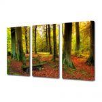 Set Tablouri Multicanvas 3 Piese Peisaj Covor rosiatic