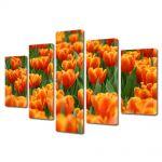 Set Tablouri Multicanvas 5 Piese Peisaj Mare de lalele portocalii