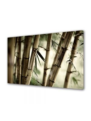 Tablou VarioView MoonLight Fosforescent Luminos in intuneric Abstract Decorativ Bambus