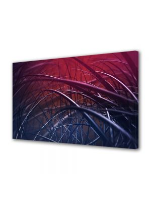 Tablou VarioView MoonLight Fosforescent Luminos in intuneric Abstract Decorativ Spice