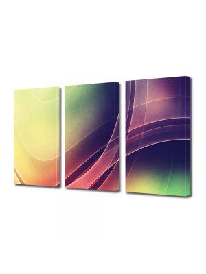 Set Tablouri Multicanvas 3 Piese Abstract Decorativ Raze intrepatrunse