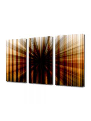 Set Tablouri Multicanvas 3 Piese Abstract Decorativ Gaura neagra