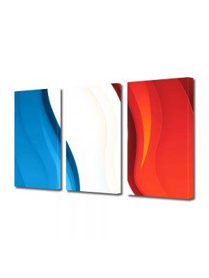 Set Tablouri Multicanvas 3 Piese Abstract Decorativ Franta