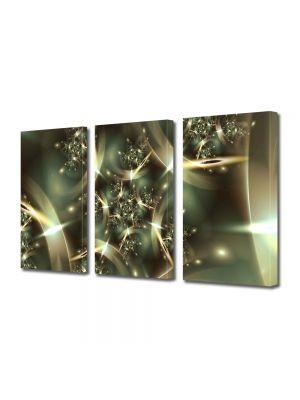 Set Tablouri Multicanvas 3 Piese Abstract Decorativ Spatiu deformat