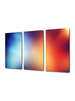Set Tablouri Multicanvas 3 Piese Abstract Decorativ Halou