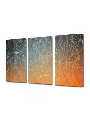 Set Tablouri Multicanvas 3 Piese Abstract Decorativ Tabla zgariata