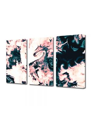 Set Tablouri Multicanvas 3 Piese Abstract Decorativ Dragon